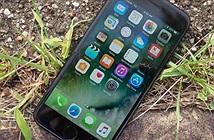 Apple bất ngờ vẫn bán iPhone 7 và 7 Plus qua cửa hàng thanh toán trực tuyến