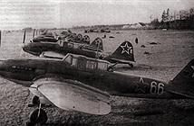 Thần chết đen Il-2 Liên Xô: ác mộng của xe tăng Đức