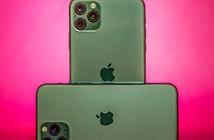 3 mẹo chụp ảnh đẹp hết ý bằng iPhone 11