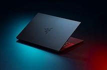 Laptop Razer Blade Stealth 13 mới: chip Intel Core 11th, RAM 16GB và màn hình OLED