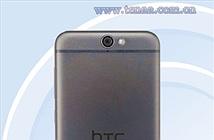 HTC One A9 sẽ có thêm phiên bản chạy Windows 10 Mobile?