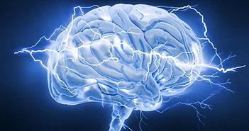 Hoạt động của con người ảnh hưởng đến não bộ thế nào?