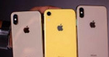iPhone 2019 được dự đoán không có nhiều cải tiến