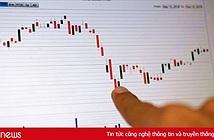 Một năm sóng gió của cổ phiếu Thế Giới Di Động