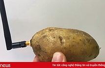 Củ khoai tây thông minh là thiết bị kỳ lạ nhất tại CES 2020