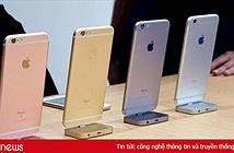 iPhone 6S, 6S Plus sắp biến mất ở Việt Nam