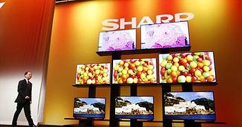 Sharp ra mắt loạt TV UltraHD với hệ điều hành Android TV