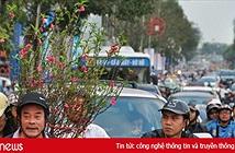 Công bố hotline tiếp nhận phản ánh về an toàn giao thông dịp Tết Nguyên đán 2018