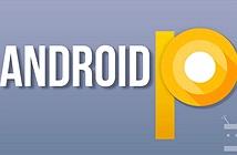 Android P sẽ thiết kế lại giao diện người dùng, hỗ trợ các kiểu hiển thị tai thỏ