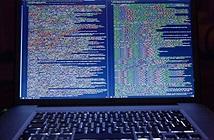 Hàng ngàn website chính phủ trở thành công cụ đào tiền mã hóa của hacker