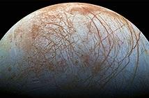 Bản sao lạnh của Trái đất có sự sống dạng… bạch tuộc?