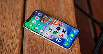 """iPhone bị """"chê"""" trong suốt kỳ mua sắm 2017, Apple vẫn lãi lớn"""