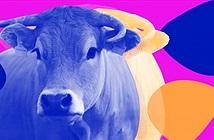 Hack khuẩn đường ruột của loài bò có thể mang lại nhiều thịt hơn và giảm ô nhiễm