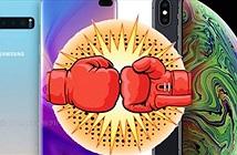 iPhone XS Max đối đầu Galaxy S10+: Ai là người đổ máu?