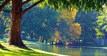 Càng gần gũi với thiên nhiên, chúng ta sẽ cảm thấy hạnh phúc hơn
