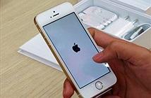 Người dùng Việt thờ ơ với iPhone SE chính hãng