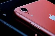 iPhone XR 2019 hiện nguyên hình, có thêm 2 màu mới