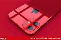 iPhone XR2 có thể là smartphone pin trâu nhất của Apple