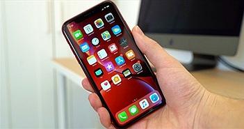 """iPhone 2020 sẽ vẫn có """"tai thỏ"""" nhưng nhỏ hơn"""