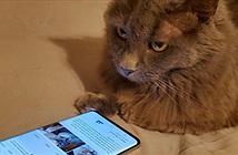 Sốc: Người dùng smartphone đang bị nghe lén