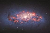 Góc nhìn lạ về thiên hà hình thành sao bụi bặm NGC 972