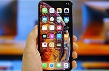 Apple chưa thể bỏ tai thỏ trên iPhone 2019, iPhone 2020?