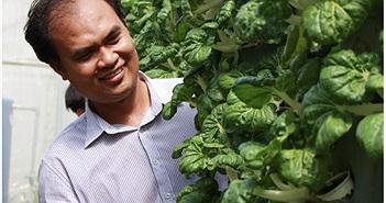 Nhọc nhằn khởi nghiệp nông nghiệp công nghệ cao