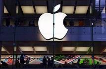 Apple từ chối mở tính năng AML trên iPhone