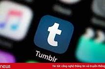 Verizon chuẩn bị bán lại mạng xã hội Tumblr cho công ty chủ quản của WordPress