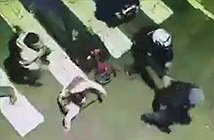 CLIP HOT NGÀY 12/9: Chết thảm khi cứu người bị tai nạn, sư tử đoạt mạng hươu cao cổ