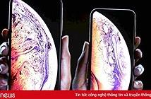 Về Việt Nam, giá iPhone XR chính hãng từ 21,9 triệu đồng, iPhone Xs Max giá cao nhất 42,99 triệu đồng