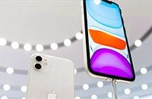 Galaxy Note 10 và iPhone 11: Cuộc đua ngôi đầu của lớp thượng đẳng