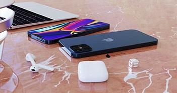 Apple chọn 5G hay màn hình 120Hz cho iPhone 12?