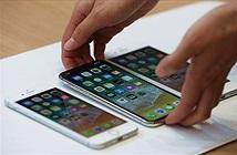 Đối tác sản xuất iPhone 8 khốn khổ vì người dùng chuộng iPhone X hơn