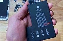 Tháo rời iPhone 12 Pro Max cho thấy pin chữ L, dung lượng giảm