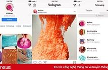 Instagram giờ còn cho người dùng theo dõi cả hashtag