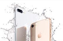 Sau nhiều năm bắt chước iPhone, Galaxy S9 sẽ bắt chước luôn chiến lược thông minh nhất của Apple