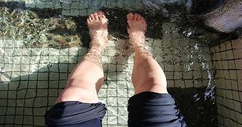 Vì sao chân tay giá lạnh vào mùa đông?