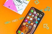 iPhone XS Max 2019: màn hình bèo hơn nên giá sẽ rẻ hơn?