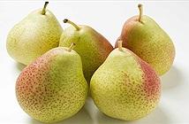 Những loại thực phẩm vàng tốt nhất cho phổi: Người có bệnh thì nên ăn nhiều để giảm viêm