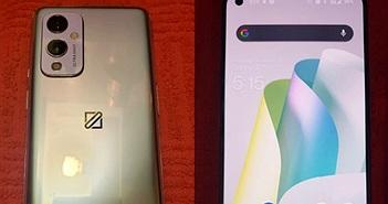 OnePlus 9 lộ ảnh thực tế: màn hình 120Hz, chip Snapdragon 888
