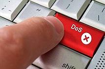 Bkav: Tấn công DDoS tiếp tục đe dọa các cơ quan, doanh nghiệp trong 2015