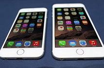 Giá iPhone 6 và Apple Watch tại Việt Nam bao nhiêu?