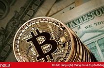 """Máy """"đào"""" tiền ảo tiếp tục đổ về Việt Nam"""