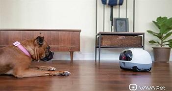 """Robot cho phép người dùng """"gọi video"""" với thú cưng từ xa"""