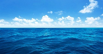 Chữa lành đại dương để chống biến đổi khí hậu
