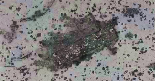Phát hiện nghĩa địa tàu bí ẩn ở vùng tìm kiếm MH370
