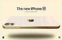 Thiết kế bóng bẩy của iPhone giá rẻ 2021, camera siêu độc lạ
