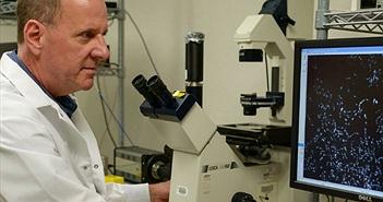 Tìm lấy chủng lợi khuẩn mới giúp phát triển thuốc ngăn ngừa sâu răng