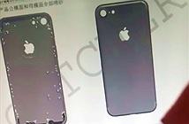 Lộ hình ảnh iPhone 7 trang bị camera lồi
